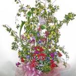 木香バラとカラーのギフトアレンジメント