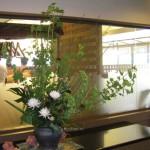 ムクゲと菊のアレンジメント