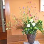花水木と花菖蒲