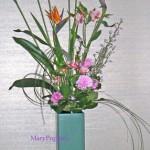 花菖蒲とストレリチア