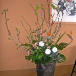 菖蒲と百合樹