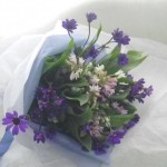 サイネリアとスズランの花束