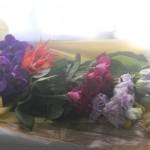 バラ、バンダの花束