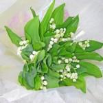 鈴蘭の花束