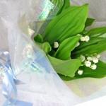 スズランの花束〜Muguet