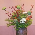 蓮台と紅葵