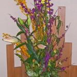 紫式部とウインターコスモス