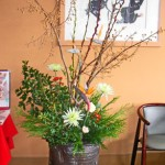 桐、赤芽柳とヒイラギ