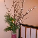 寒桜と黄実千両