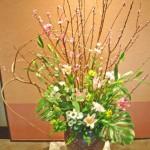 雲竜桑と菜の花のアレンジ