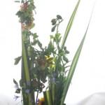 パンダナスリーフと向日葵