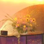 向日葵とスモークツリー