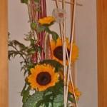 向日葵とオクラ