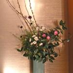 山茶花と赤芽柳