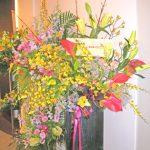 オンシジウムとアンスリウムのスタンド装花