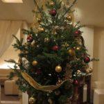フレッシュ樅のクリスマスツリー