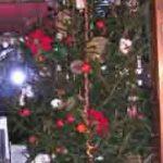 樅の木のクリスマスディスプレイ