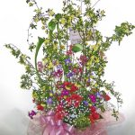 木香バラとリューココリーネ