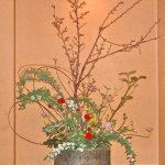 啓翁桜とコデマリ