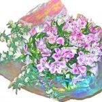 アルストロメリアとコデマリの花束