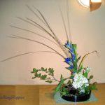 竜胆と紫陽花