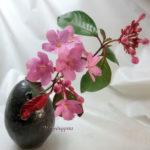 一輪挿しの匂い桜