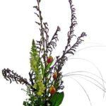 木藤と金魚草