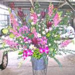 金魚草とクジャクソウのスタンド装花