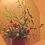 アゲラタムとチューリップのアレンジ