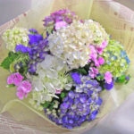 アゲラタムと紫陽花の花束