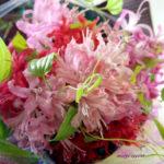 ネリネの花束