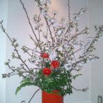 ラナンキュラスと吉野桜のアレンジ