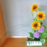 向日葵とギガンチウム
