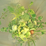 蓮の実とグロリオーサ