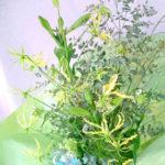 グロリオーサとテッポウ百合の花束