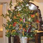 山茶花とグロリオーサ