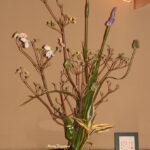 花ミズキと丹頂アリウム