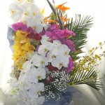ストレリチアとコチョウランを使った花束