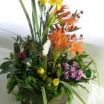 福寿草と水仙を使ったアレンジメント
