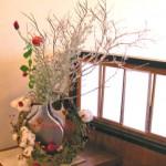 コットンツリーとサンキライリースのアレンジメント