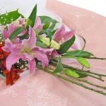 梅(ズバイ)とグズマニアの花束