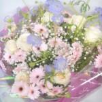ブルーレースフラワーとガーベラの花束