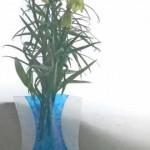 バイモの花束
