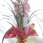 シンビジウムの鉢植えギフト