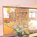 八重桜とミモザのアレンジ