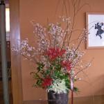 啓翁桜と枝垂れ柳