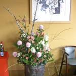 苔梅と枝垂れ柳
