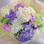 アゲラタムとアジサイの花束