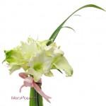 シャガの葉とアマリリスの花束