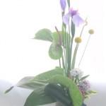 花菖蒲とアンスリウムのアレンジメント